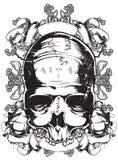 Cranio triste Fotografia Stock