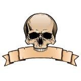 Cranio umano colorato con l'insegna del nastro Immagini Stock Libere da Diritti
