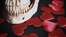 Cranio umano con cuore rosso Concetto per il giorno del ` s del biglietto di S. Valentino sussidi stock footage