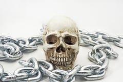 Cranio umano con la catena del ferro Immagine Stock