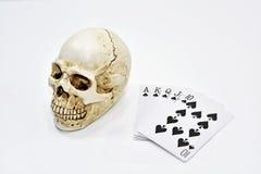 Cranio umano decorativo con le carte da gioco fotografie stock