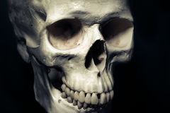 Cranio umano isolato, concetto del pericolo Immagini Stock Libere da Diritti