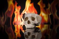 Cranio umano su fuoco Fotografia Stock Libera da Diritti