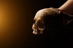 Cranio umano su una priorità bassa nera Effetto del chiarore Immagine Stock Libera da Diritti