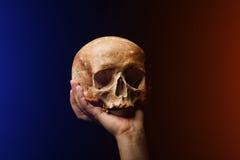 Cranio umano su una priorità bassa nera Effetto del chiarore Fotografie Stock Libere da Diritti