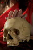 Cranium and hand. Human cranium in the woman's lap and beauty hand stock image