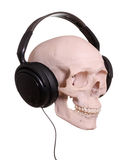 Cranium with headphones. On white background royalty free stock photo