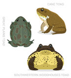 Crapaud Cane Set Cartoon Vector Illustration Images stock