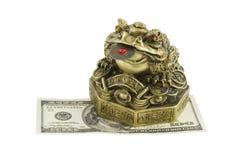 Crapaud d'argent se reposant sur le dollar Image libre de droits