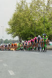 Crash at the Tour of Turkey in Istanbul, 2015. On 03.05.2015 Davide Rebellin crashed at the Tour of Turkey in Istanbul because of a dog ran on the road. Rebellin royalty free stock photos