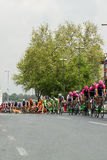 Crash at the Tour of Turkey in Istanbul, 2015. On 03.05.2015 Davide Rebellin crashed at the Tour of Turkey in Istanbul because of a dog ran on the road. Rebellin stock image