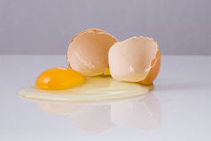 Crashed egg Stock Images