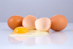 Crashed egg Stock Photos