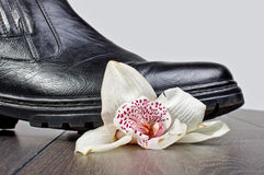 Crashed flower by shoe on the wooden floor Stock Photo