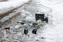 Crashed shopping cart. A crashed shopping cart on the side of the road in snow slush Stock Photography