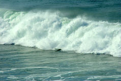 Crashing surf wave Royalty Free Stock Images