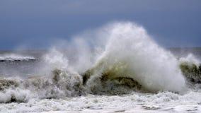Crashing Wave Stock Image