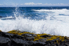 Crashing Wave Royalty Free Stock Photos