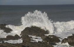 Crashing wave on rocks. Stock Photography