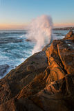 Crashing wave on sunrise Stock Images
