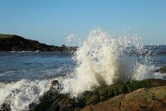 Crashing Wave Royalty Free Stock Images