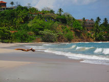Crashing Waves. On the Beach in Guanacaste, Costa Rica Stock Photo
