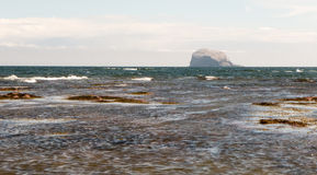 Crashing waves on the coast with Bass Rock in the background. Bass Rock with crashing waves in the foreground on a windy summer& x27;s day Royalty Free Stock Photos