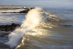Crashing waves Stock Photography