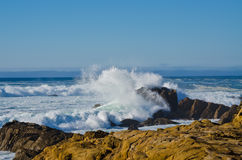 Crashing Waves. Salt Point State Park in California stock image