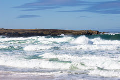 Crashing waves at Surf bay, Falkland Islands. Royalty Free Stock Photos