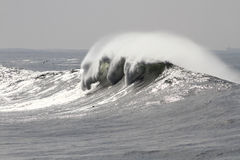 Crashing white wave Stock Photography