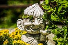Crassulacee nel giardino che cresce su un supplemento del giardino Fotografie Stock Libere da Diritti