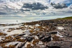 CRASTER, NORTHUMBERLAND/UK - 18 ΑΥΓΟΎΣΤΟΥ: Άποψη της δύσκολης ακτής στοκ φωτογραφία με δικαίωμα ελεύθερης χρήσης