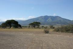 Cratère de l'Afrique, Tanzanie Ngorongoro Image stock