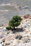 Cratère de météore Image libre de droits