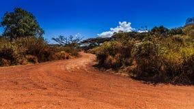 Cratère de Ngorongoro en Tanzanie Photographie stock libre de droits