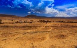 Cratère de Ngorongoro en Tanzanie Image stock