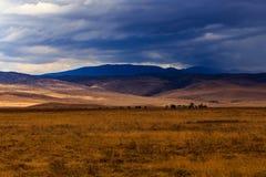 Cratère de Ngorongoro en Tanzanie Photos libres de droits