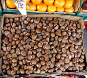 Crate of chestnuts Stock Image