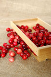 Crate of cranberries Stock Photo
