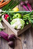 Crate with different fresh farm vegetables. Cauliflower, garlic, radishes, spring onion, beetrots,  and cucumbers on rustic wooden background Stock Image
