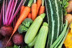 Crate of fresh harvested vegetables stock photos
