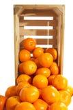 Crate fresh tangerines Royalty Free Stock Image