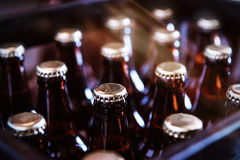 Crate of Freshly Bottled Beer Stock Photography