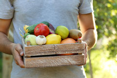 crate with fruits and vegetables royalty free stock photos