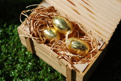 Crate with golden eggs Stock Image