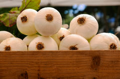 Crate of onions. White onions in wooden crate at farmers market Stock Image
