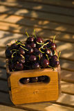 Crate of organic cherries Stock Photography