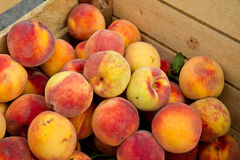 Crate of Peaches Royalty Free Stock Photos