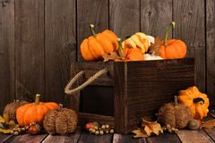 Crate of pumpkins and gourds against rustic wood Stock Photo